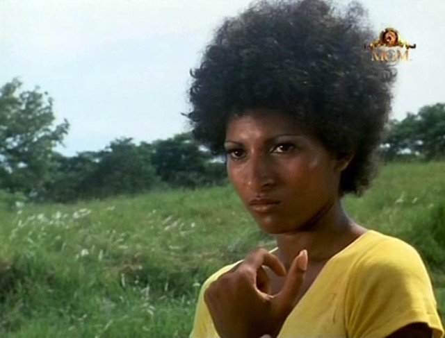 Pam Grier, Black Mama per eccellenza